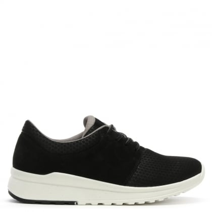 Black Suede & Mesh Sporty Trainers
