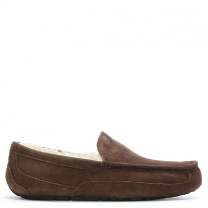 Brown Suede Men's Ascot Slipper