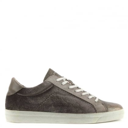 Hudson Evert Grey Velvet Lace Up Sneaker