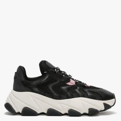 7e1480fc143 Ash Shoes | Ash Footwear | Daniel Footwear