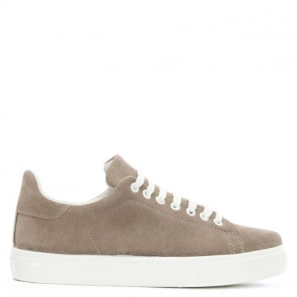 DF By Daniel Blasket Taupe Suede Lace Up Trainer