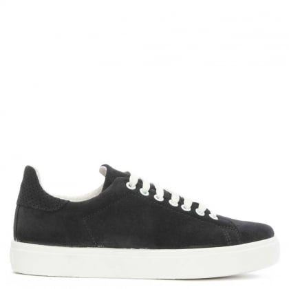 Surtsey Navy Suede Lace Up Trainer