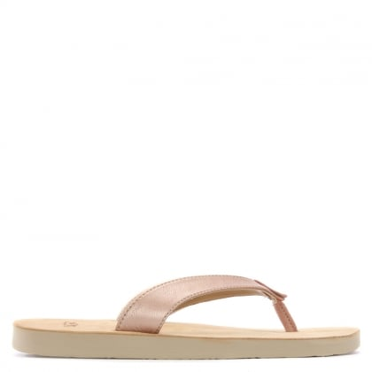 Tawney Rose Gold Metallic Toe Post Flip Flops