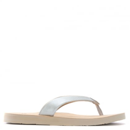 Tawney Silver Metallic Toe Post Flip Flops